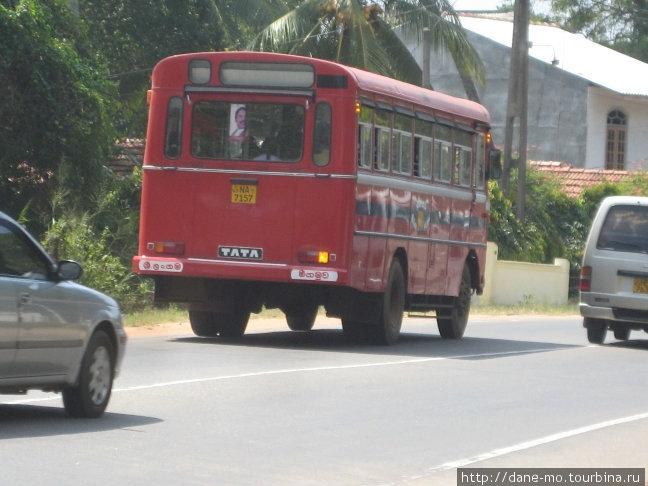 ...но потом я понял, что таким образом она останавливала автобус.