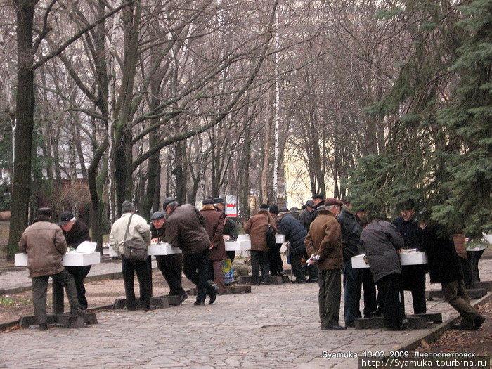 Раннее утро... За столиками проводят свой досуг дедушки-пенсионеры. Они играют в шахматы... играют весь день... и каждый день... и даже зимой...
