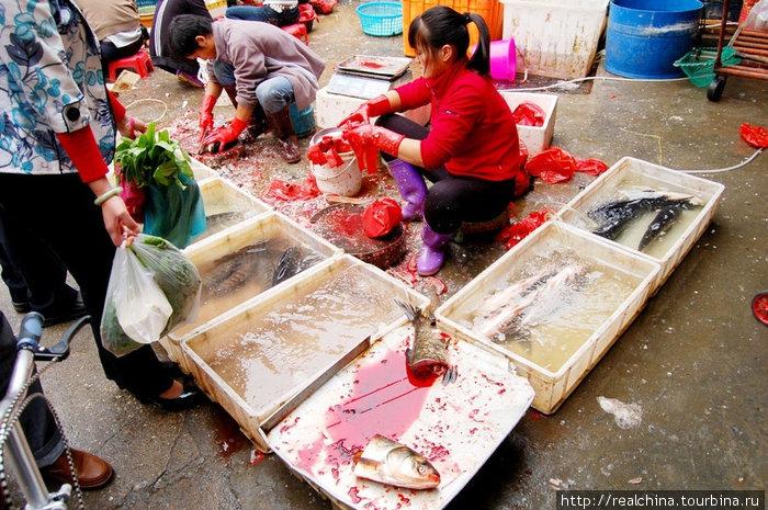 Специально обученный человек сидит возле лотков с рыбой и, орудуя металлической щеткой для снятия чешуи и острым изогнутым ножом, потрошит рыбу с невероятной скоростью. Его лицо безучастно. Сямэнь, Китай
