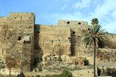 Крепость и пальма
