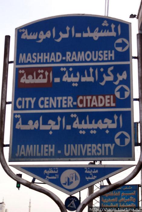 Дорожный указатель на окраине Алеппо — по нему и ориентировались, когда искали дорогу с окраины в центр города