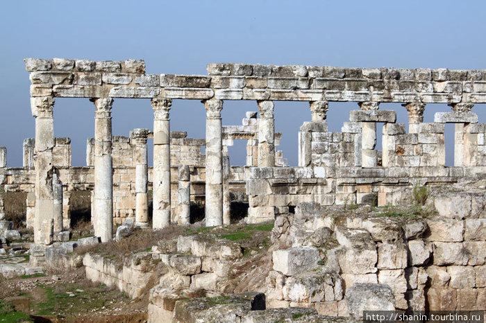 Два ряда колонн
