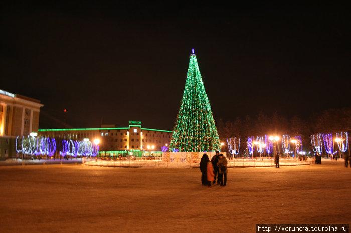 Новогодняя елка в великом новгороде