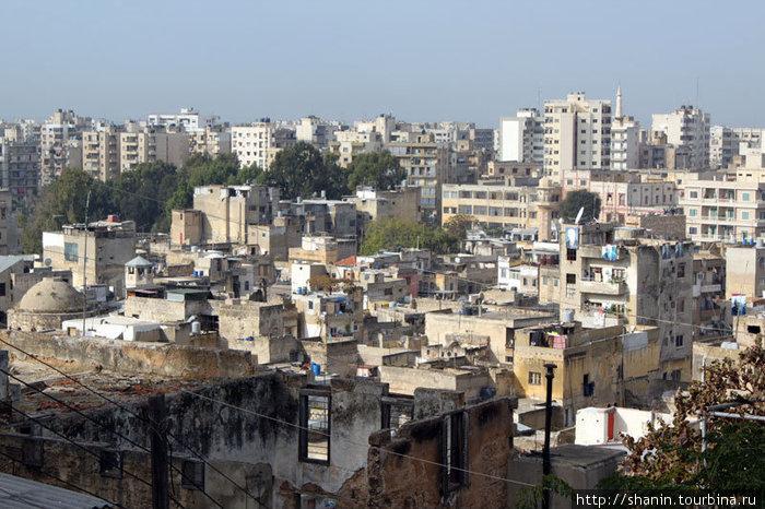 Триполи