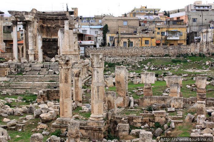 Руины храма Венеры