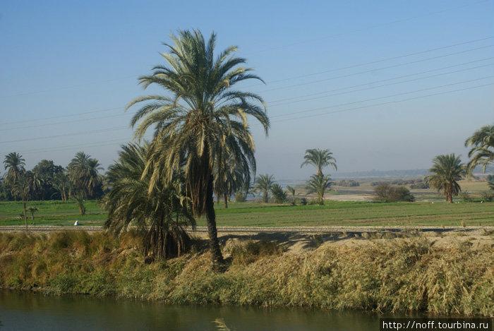 По дороге в Луксор На горизонте виден Нил