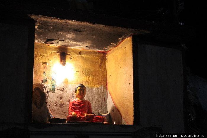 Будда и насекомые (летят на свет) Шри Пада Пик (Пик Адама 2243м)  заповедник дикой природы, Шри-Ланка