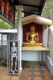 Будда и скелет