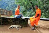 Разговорчивый монах. Вообще буддистским монахам запрещено прикасаться к женщине. Разговоры с женщинами тоже не приветствуются. Но монахи ведь тоже люди!