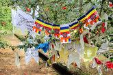 Буддистские флажки на священном дереве