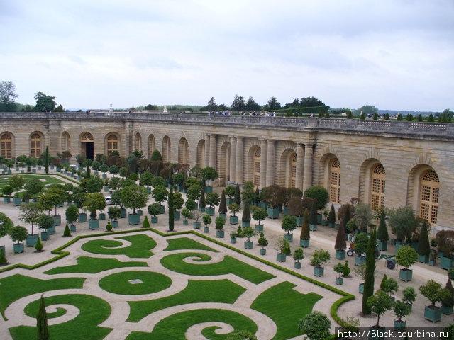 Оранжерея и дворцовые стены