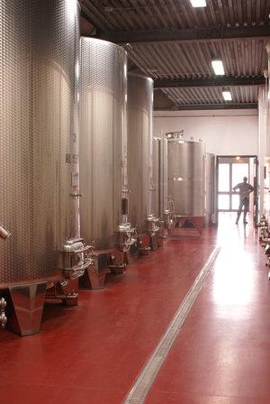 Asenda Il Ciliegio. Вино и футбол.. Azienda Agricola Il Ciliegio