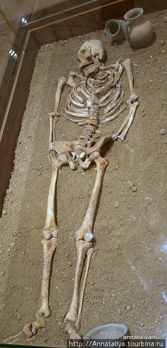 Погребение времен позднего Танаиса.