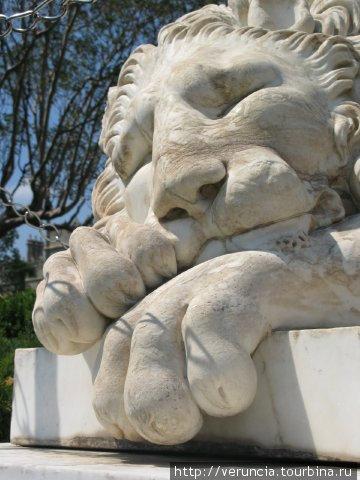 Спящий лев.