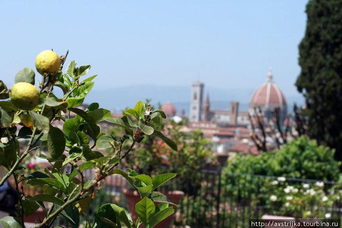 вид на Флоренцию со смотровой Микеланджело