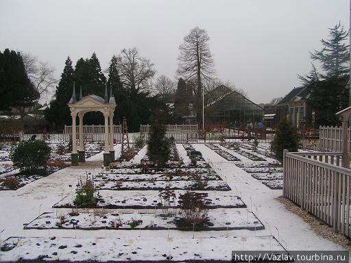 К сожалению, большая часть делянок засыпана снегом...