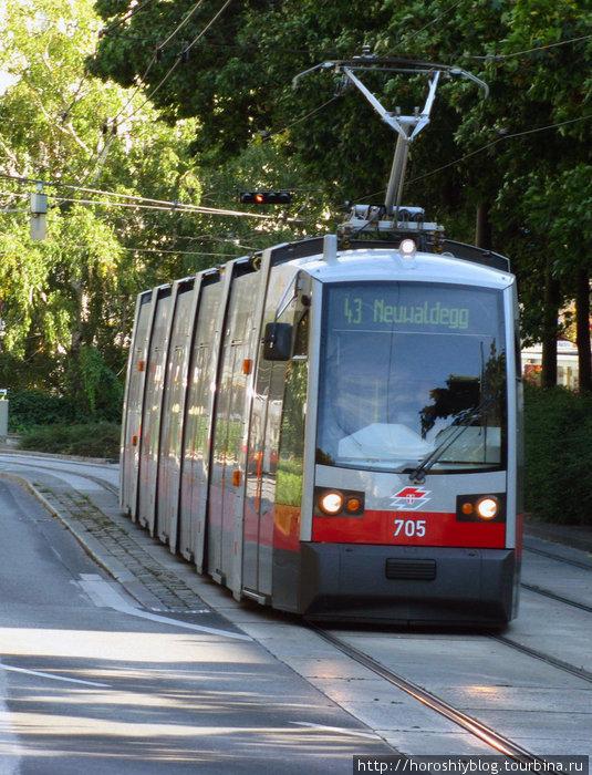 С билетами в Вене интересно: для всех видов транспорта они здесь однотипные, т.е. один и тот же билет можно использовать и для поездок в метро и автобусах и трамваях и даже в S-Bahn