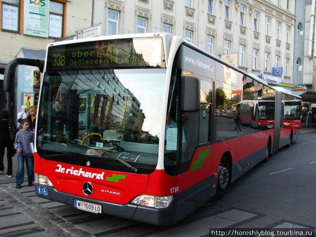 Несмотря на сравнительно небольшое количество пассажиров, автобусы с гармошками, поэтому в салоне практически всегда есть места.