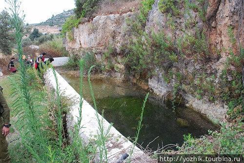 Один из источников в Вади А-Зарка.