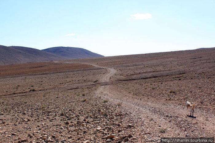 Дорога от монастыря к цивилизации