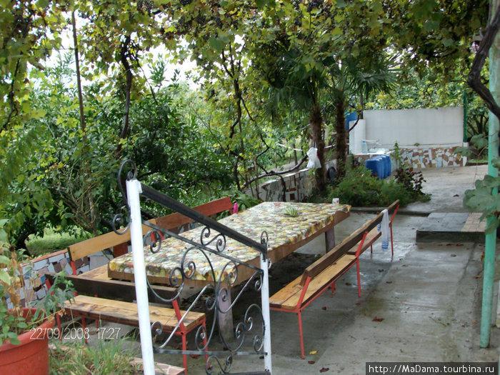 Большой стол в виноградной беседке для отдыхающих