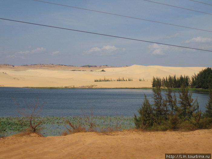 № 4 — белые дюны