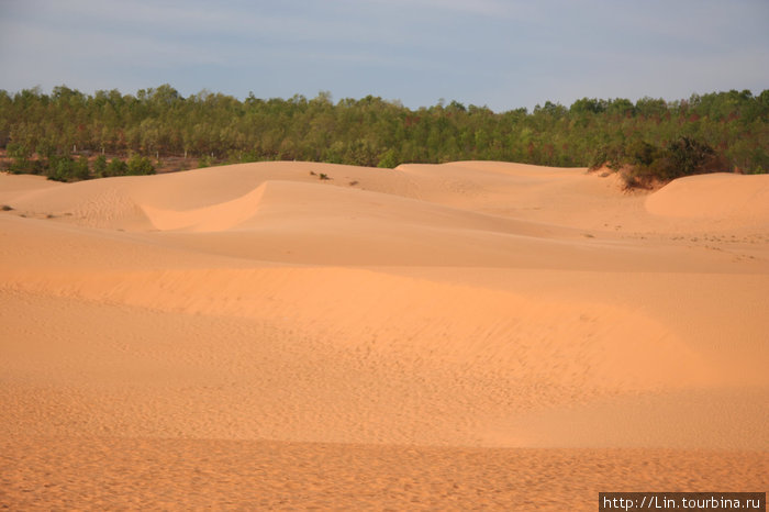 № 3 — красные дюны