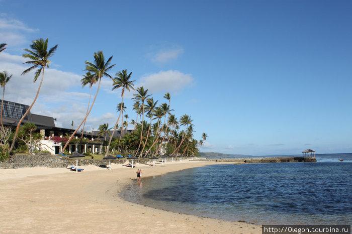 Пальмы, солнце и океан- таких видов на Фиджи много