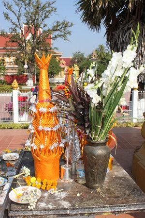 Везде цветы