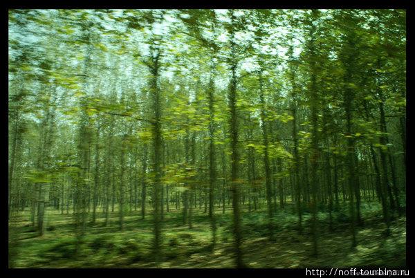По дороге в Пуболь. Зелени больше, чем в районе Барселоны.