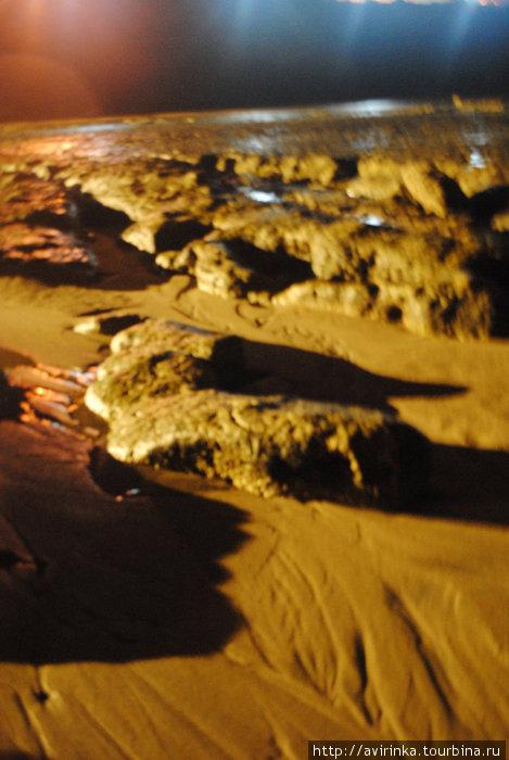Океанский ландшафт во время отлива