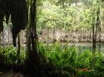 подземные пещеры в санто-доминго. озеро.