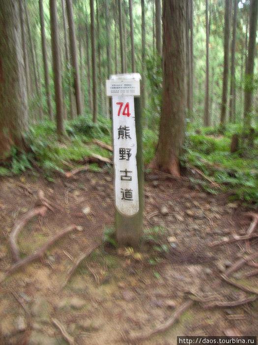 Написано: Древняя тропа Кумано, 74 участок