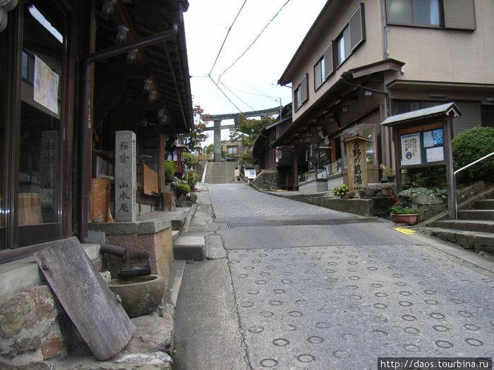Центральная улица, которая тянется от подъёмника в гору