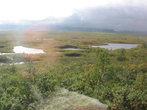 На уральском водоразделе. Здесь между реками бассейнов Оби и Печоры минимальное расстояние и превышение — отличное место для волока