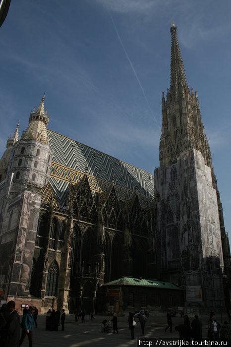 собор Святого Стефана все еще в лесах