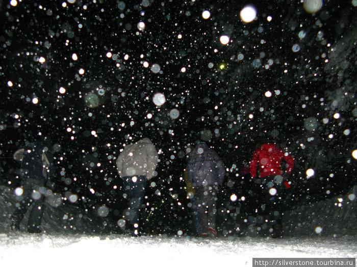 Первый день снегопада