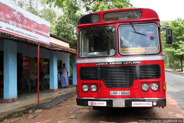 Автобус на промежуточной остановке — на обед. На Шри-Ланке красные автобусы — государственные, на них проезд дешевле, чем на белых частных автобусах