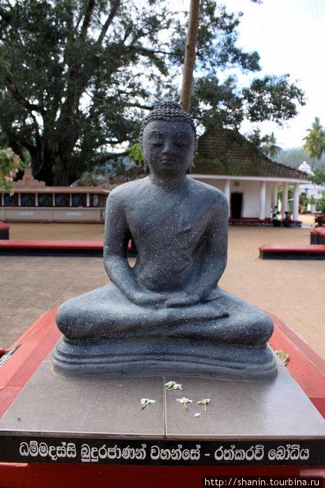 Будда на территории монастыря Мутиягана Вихара