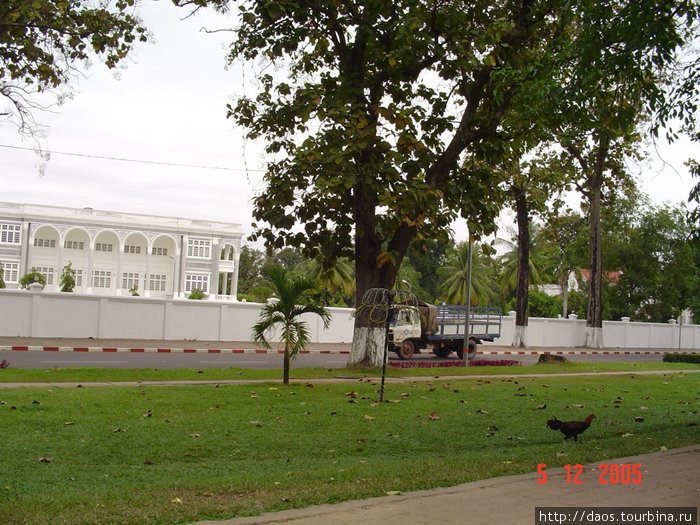 Куры гуляют у президентского дворца