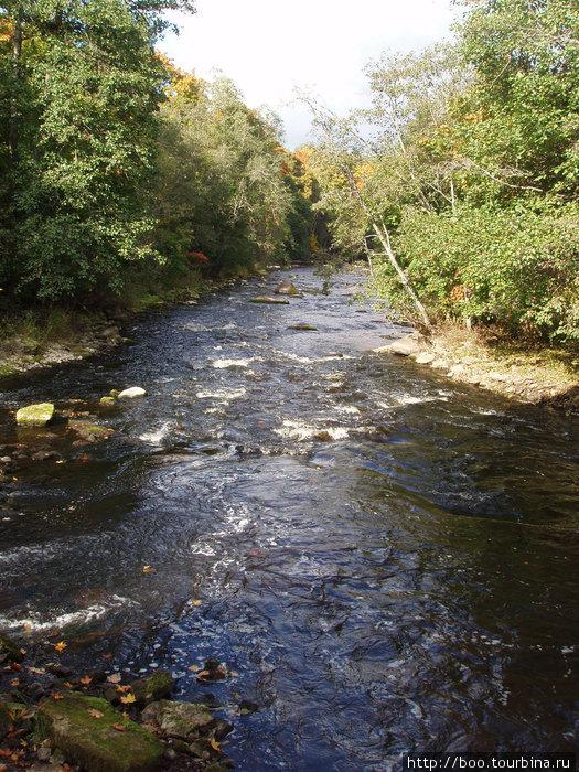 А после водопада река быстра и камениста.