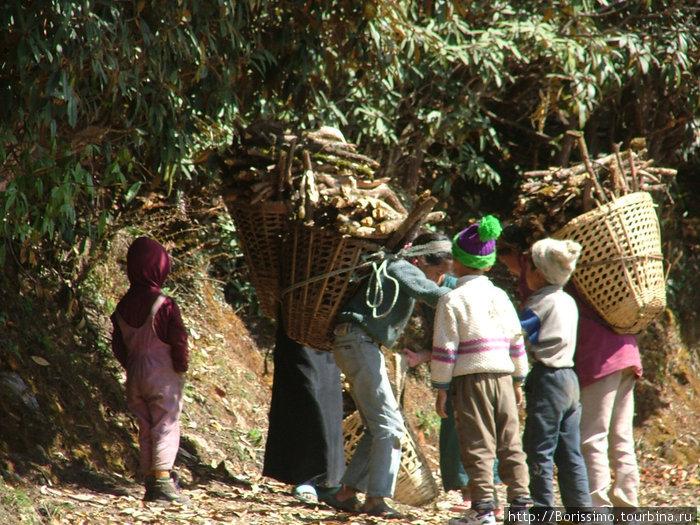 Непальцы — очень трудолюбивый народ. Если Вам кажется, что у Вас было трудное детство — посмотрите на этих детишек, и Вы измените своё мнение.