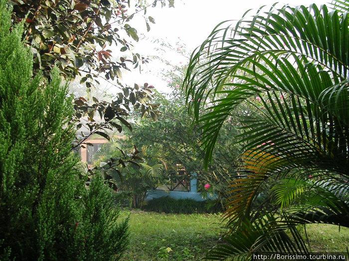 Вот в таком райском уголке мы жили рядом со слонами :-).