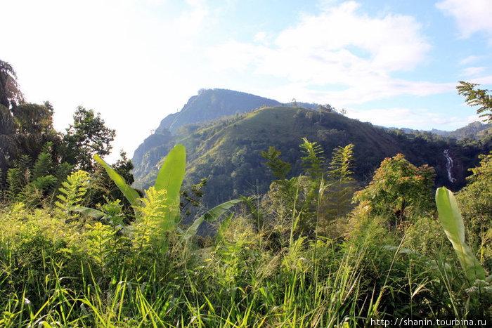 Вершина скалы Элла