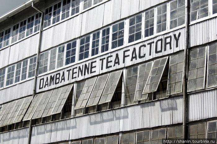 Чайная фабрика Дамбатенне