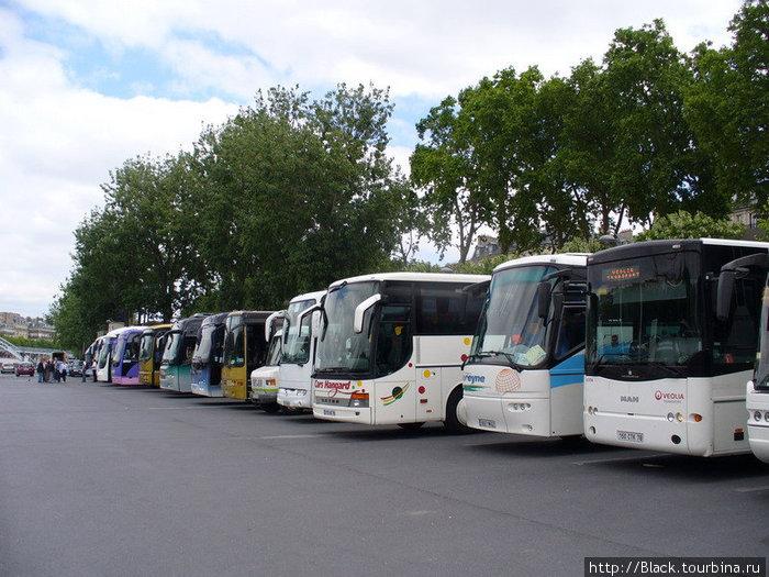 А это автобусы, которые привозят толпы страждующих поднятся на Эйфелеву башню