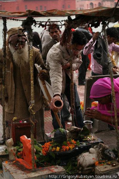Верующие регулярно поливают лингамы водой или молоком, но они каменные и вырасти уже не могут.