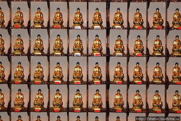 Золотые Будды — маленькие, но много
