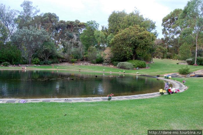 Озеро с утками и табличками по периметру