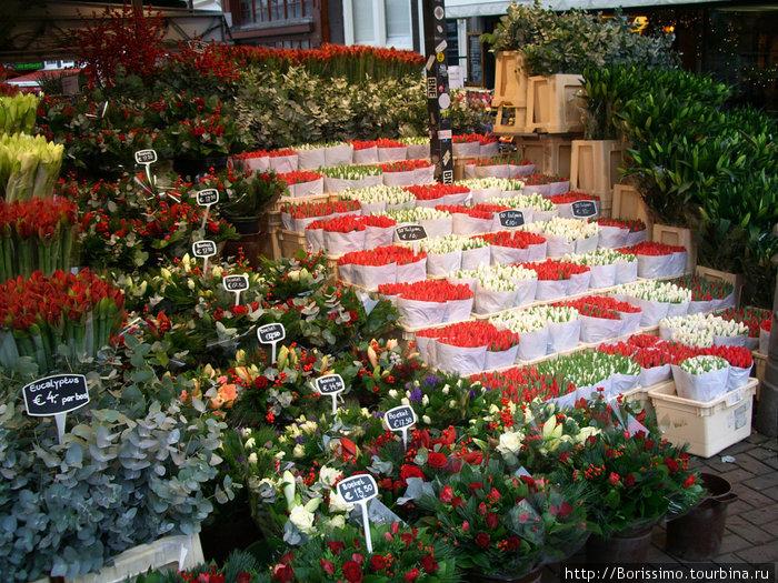 Как и его цветочные рынки